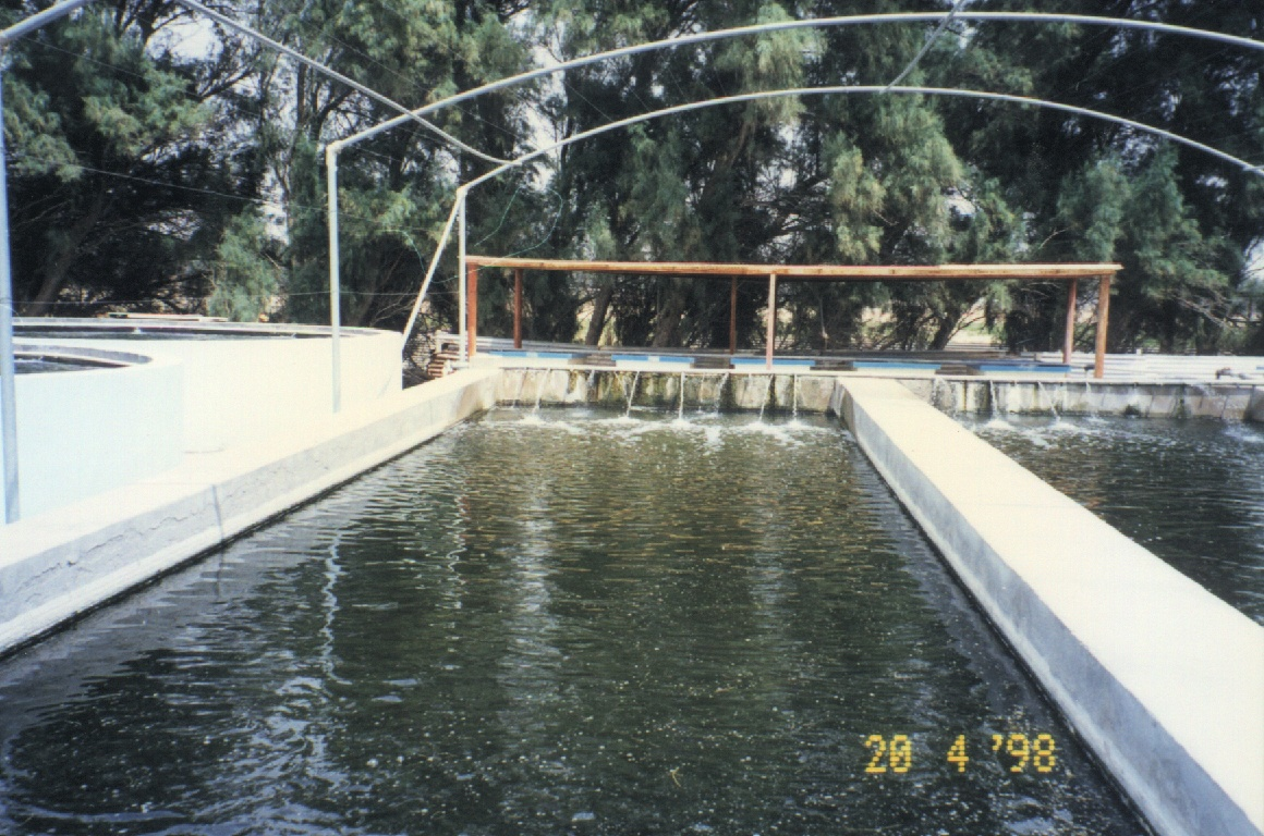 Business plan for fish farming