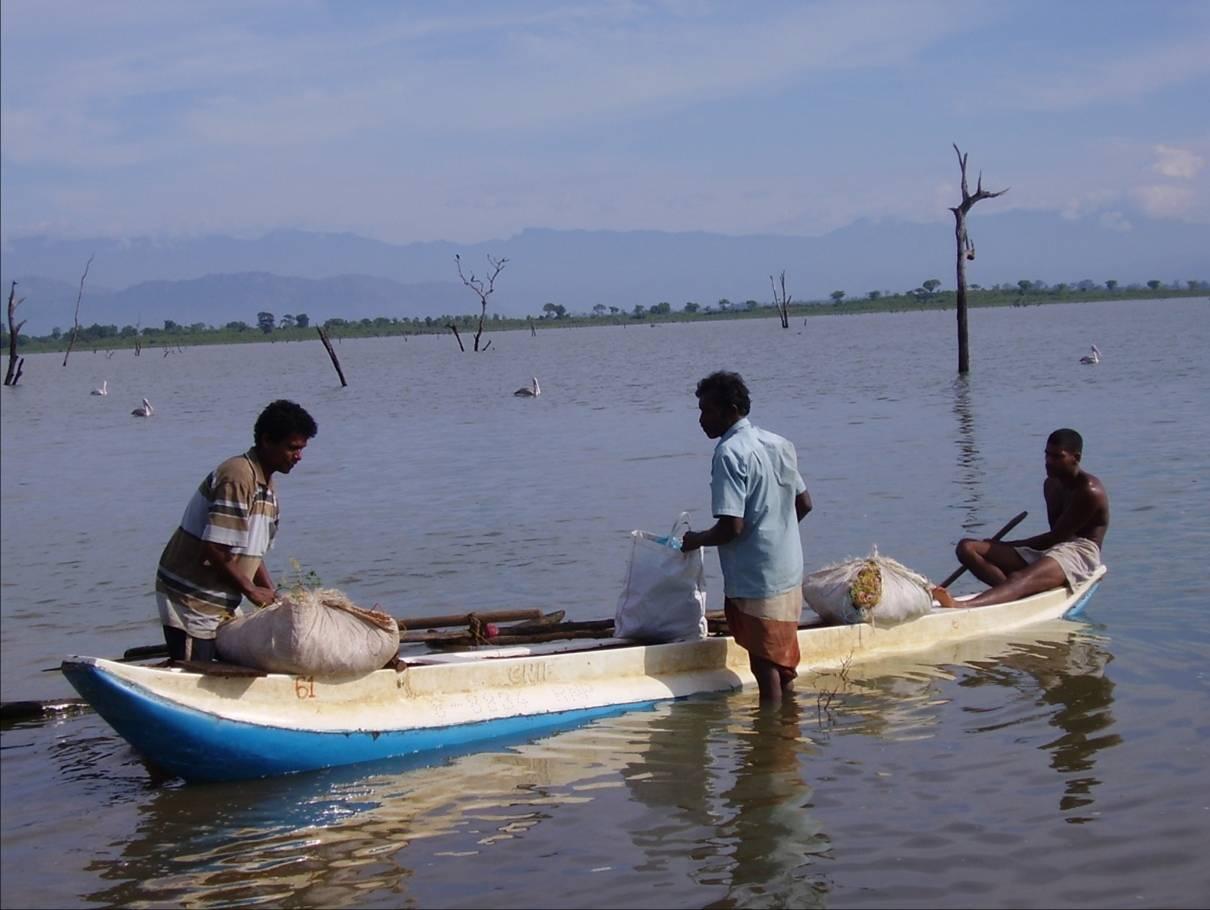 Fishermen prepare for fishing in udawalawe tank sri lanka for Sri lanka fishing