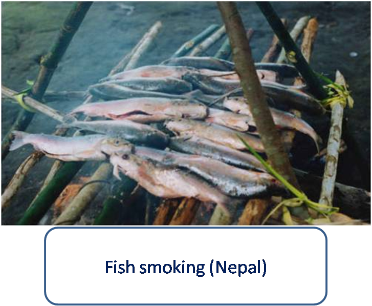 Fish preservation through smoking and sun drying in nepal for Smoking fish in a smoker