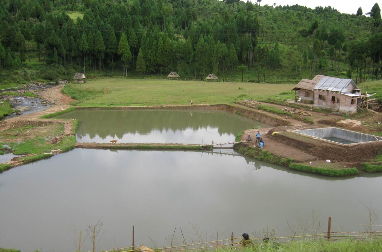 Small scale subsidized aquaculture projects under the for Koi pond india