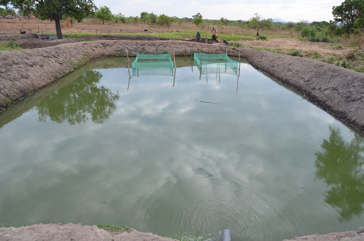 Construction Of Fish Ponds By The Katapua Community