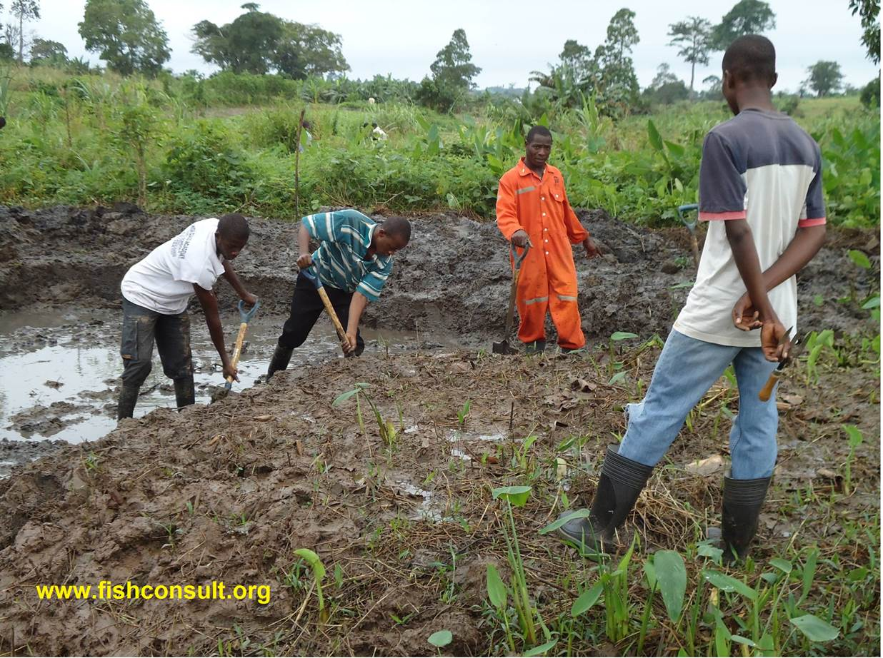 Constructing A Fish Pond On The Campus Of Kwadaso College
