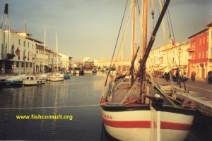 Fishing Boats in Cesenatico (Italy)