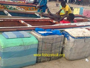 Ice boxes on artisanal fishing boats in Gambia