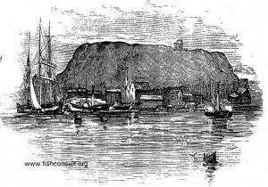 Ship ballasting (ballasting hill)