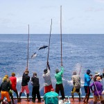 Pole and Line tuna fishing in the Maldives