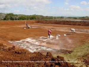 Preparation of a shrimp pond in Fiji