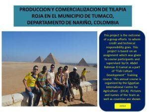 produccion-y-comercializacion-de-tilapia-roja-en-tumaco-marino-colombia