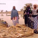 culture-african-arowana-in-burkina-faso-01